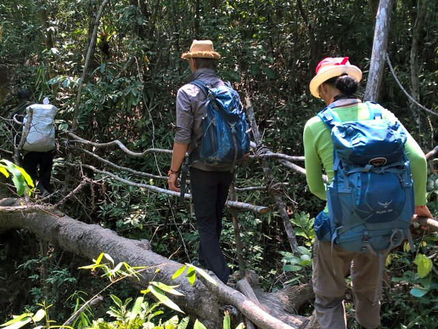 Chi Phat Trekking on a Jungle Trail