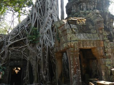 angkor-ta-prohm-jungle-temple